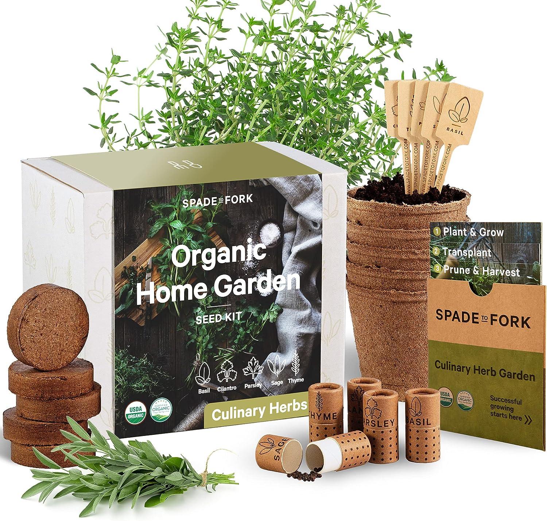 Indoor Herb Garden Starter Kit   Certified USDA Organic Non GMO   9 Herb  Seed Basil, Cilantro, Parsley, Sage, Thyme, Potting Soil, Peat Pots   DIY  ...